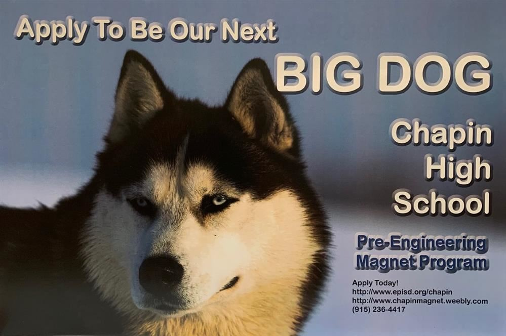 Are you ready to be the next BIG DOG?